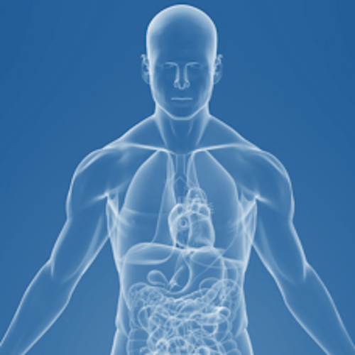 New Health Sciences Frontiers in Metagenomics and the Human Microbiome